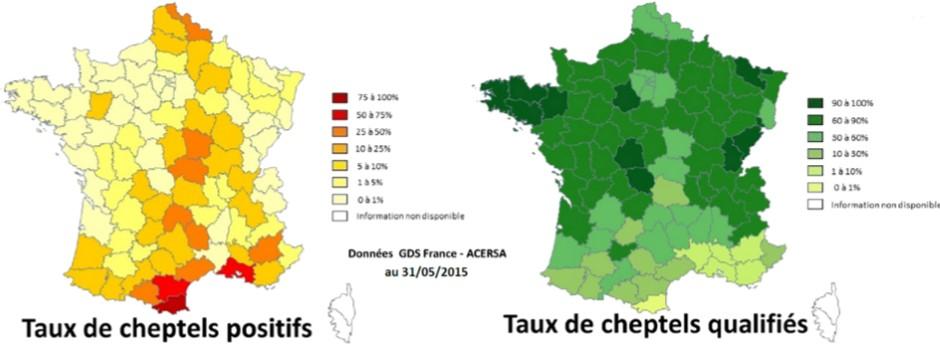 IBR Situation en France